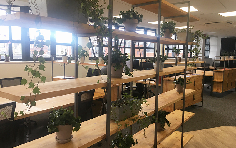 Green Coworking spaces are creating a more eco-friendly workplace